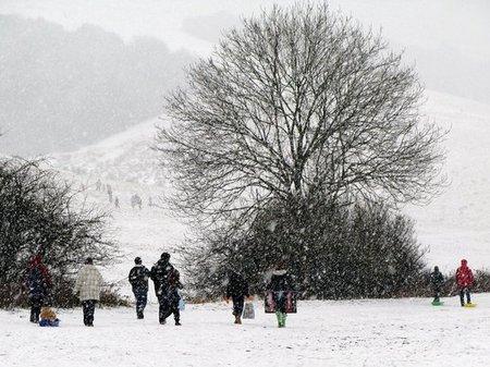 Snow Pictuers 2010