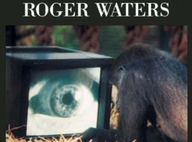 Roger Waters album amused to death