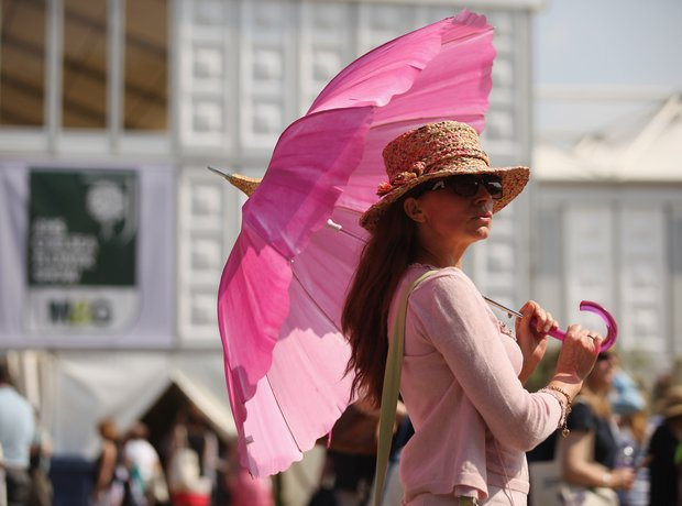 Pink sun umbrella at Chelsea Flower Show
