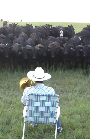 Farmer plays trombone to his cows