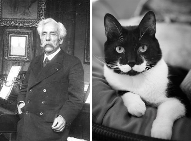 Cat composer lookalike Fauré