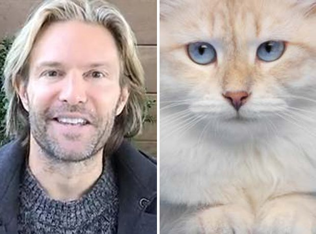 Cat composer lookalike Whitacre
