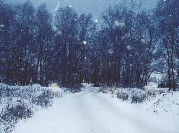 Winter landscape snow forest