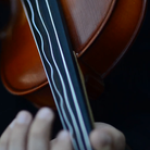 violin string vibration