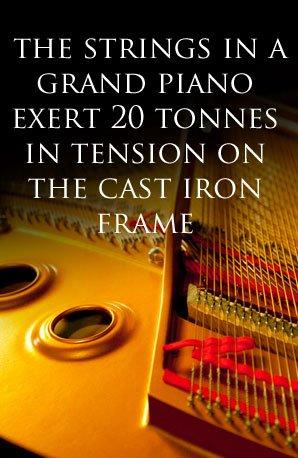 Piano fact